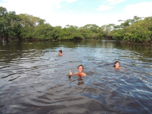 Incredible. Swimming with Pink Amazon River Dolphins.